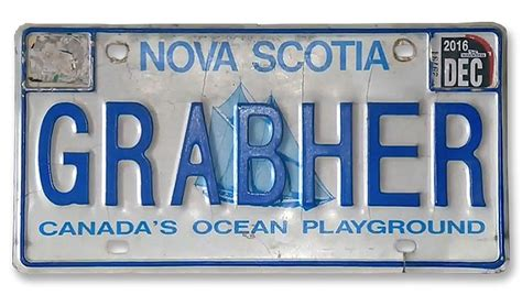 Permission Letter To Keep License Plates license plate featuring s last name deemed offensive