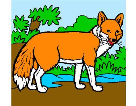 imagenes animadas zorro dibujos de zorros para colorear dibujos net