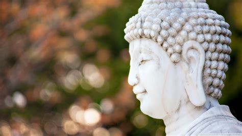 white buddha head wallpapers  images wallpapers