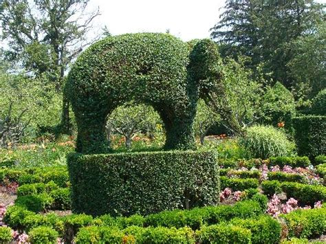 green animals topiary garden the picture of green animals topiary gardens