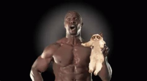 Terry Crews Old Spice Meme - terrycrew eurotraining gif terrycrew eurotraining