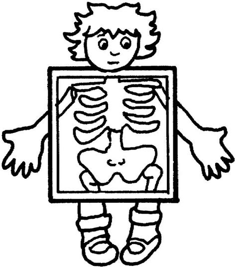 free printable x rays x ray clipart outline pencil and in color x ray clipart