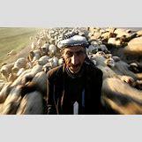 Kurds Genocide | 610 x 373 jpeg 66kB