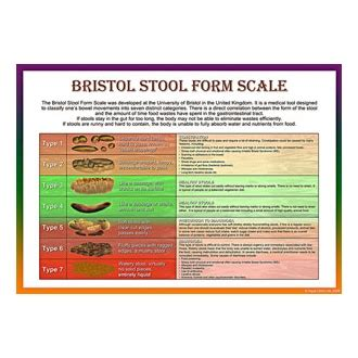 Bristol Stool Scale Poster by A Unique Visual Tool Bristol Stool Scale Poster Serves As