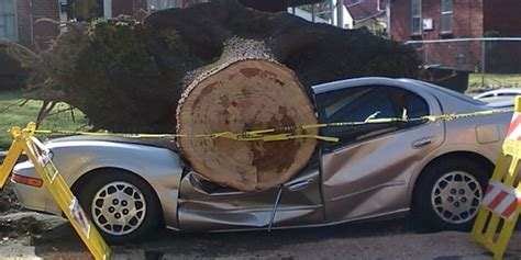 auto insurance when a tree that 4000 pound piece of metal is a weapon make sure you re insured live free md