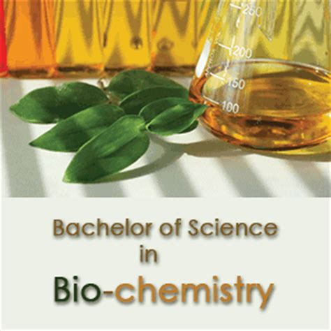 Bs In Chemistry And Mba by Bachelor Of Science In Bio Chemistry B Sc In Bio