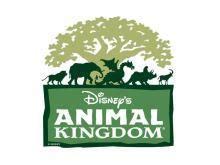 themes kingdom coupon disney s animal kingdom coupons 2018 printable coupons