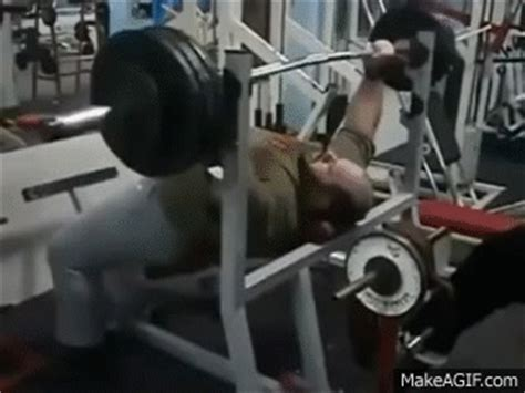 belly bench press epic bench press with beer belly stomach bouncing on make