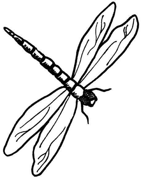 printable dragonfly stencils free printable dragonfly stencil dragonfly printable