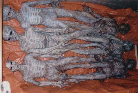 nuevas imagenes roswell encyclop 233 die du paranormal 6 aliens bodies