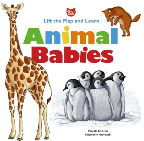 Speeds Along A Learning Lift The Flap Book animal babies lift the flap and learn by pascale hedelin ages 4 8