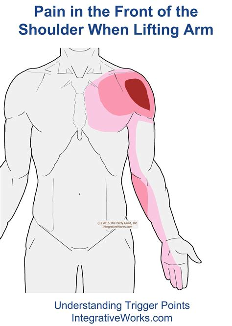 why does my shoulder hurt when i bench press front of shoulder pain when raising arm integrative works