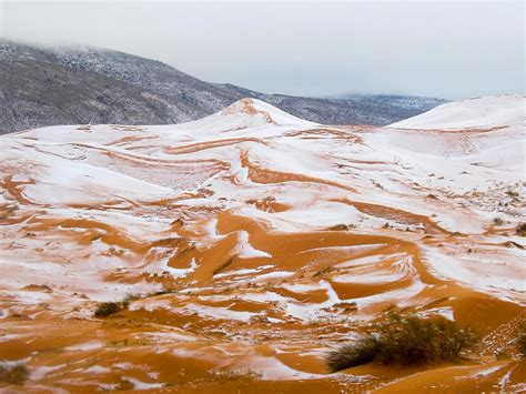 snow in the sahara desert sees snow for the first time in