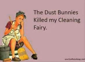 Funny cleaning house cleaning funny quotes quotesgram