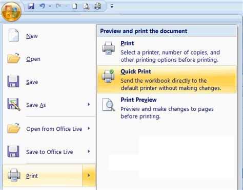 excel format cleaner 2007 excel 2007 spreadsheet print options