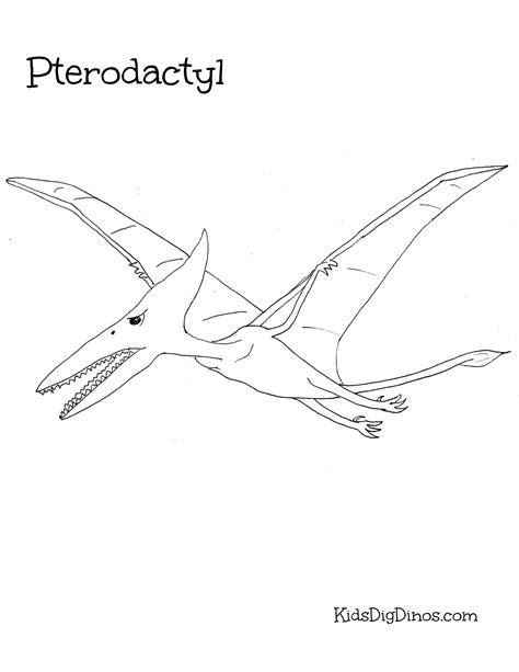 Pterodactyl Coloring Sheet Coloring Coloring Pages Pterodactyl Coloring Pages