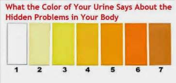 what does the color of your healam what does the urine color say about your health