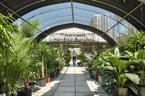 Midtown Garden by Prism Creative Miami S Only Culture Crusaders