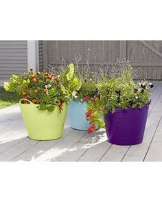 Gardener S Supply Tubtrug 1000 Images About Container Gardens On