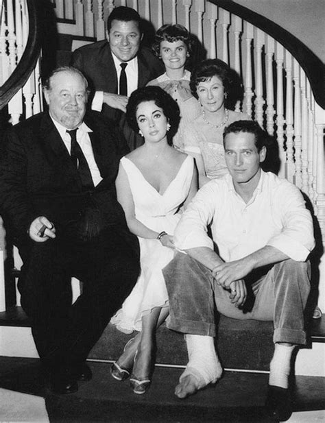 filme schauen cat on a hot tin roof the cast of the film version of tennessee williams cat on