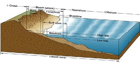 what is at section beach cross section diagram britishseafishing co uk