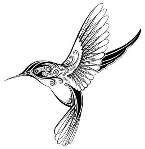 Hummingbird Outline Picture by Simple Hummingbird Outline Coloring Pages Stick And Poke Pics Hummingbird