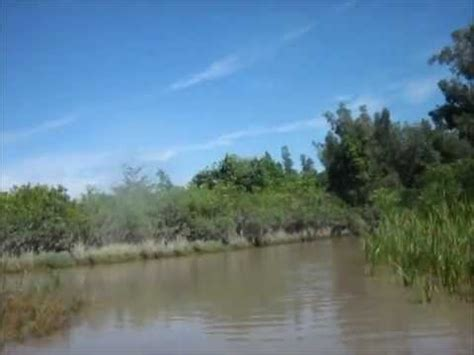 youtube airboat tour everglades airboat tour in the everglades alligator farm florida