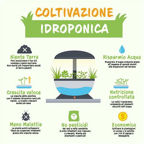 coltivazione idroponica in casa giardino senza terra 5 vantaggi della coltivazione