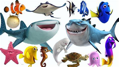 imagenes animales marinos infantiles sonidos de animales del mar para ni 241 os youtube