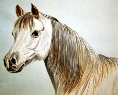 watercolor horse tutorial how to paint a horse watercolour horse painting tutorial
