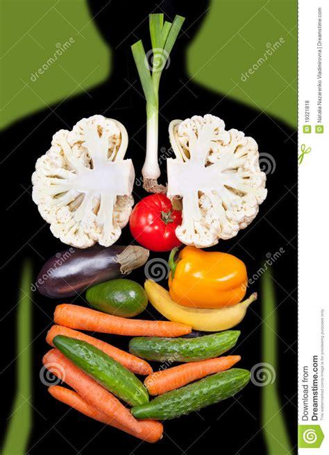 organi interni umani gli organi interni umani hanno allineato con le verdure