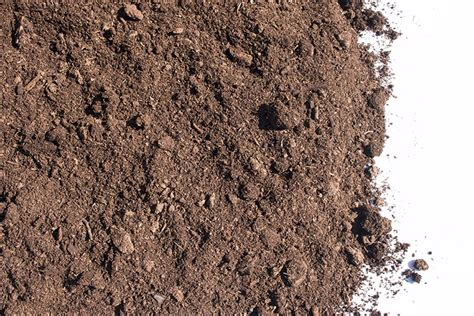 peat moss cls landscape supply
