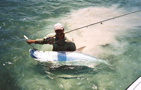 Umpan Pancing Air Tawar ada 4 jenis umpan yang disukai ikan air tawar spot mancing