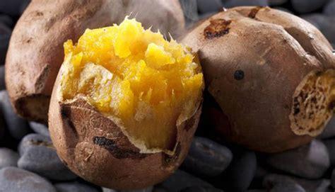 Oven Untuk Ubi Cilembu manfaat ubi cilembu untuk kesehatan tubuh kita matajurnal