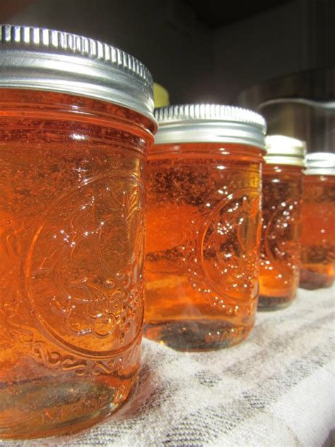 apple pectin stock jelly culinaria eugenius