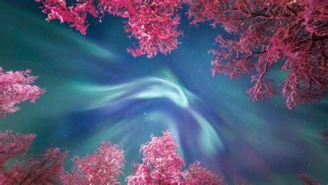 imagenes goticas espectaculares las fotos de astronom 237 a m 225 s espectaculares de 2017