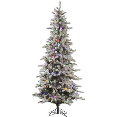 12 ft slim flocked christmas tree vickerman 32346 12 x 56 quot flocked slim fir 900 multi color italian led 100 multi