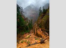 Joe's Guide to Zion National Park - Hidden Canyon Photos (4) Milo Tree
