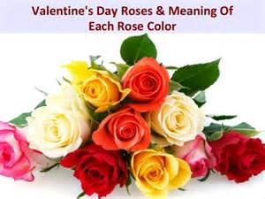 meaning of color roses s day roses meaning of each color