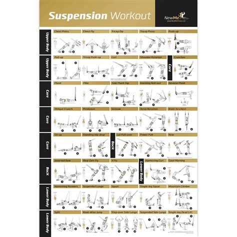 fuerza a s guide to strength physique books laminated trx suspension exercise poster strength