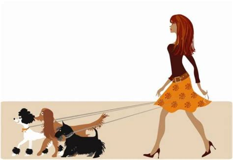 when can puppies walk walking rover kennels