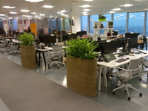 office plant decoration kl 78 images about indoor garden design office planting