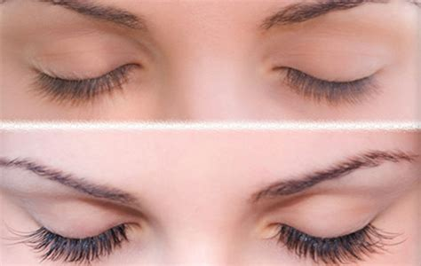 How To Save A Dying Plant by Eyelash Tinting For Big Beautiful Eyes That Shine Bright