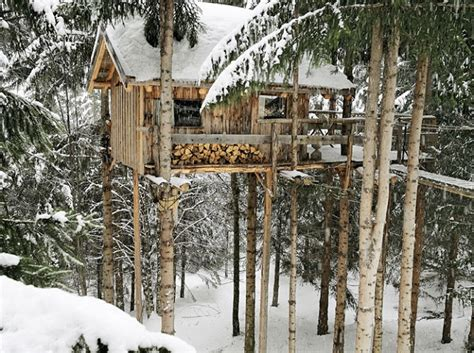 Livable Treehouses Home Design Garden Architecture Livable Tree House Plans