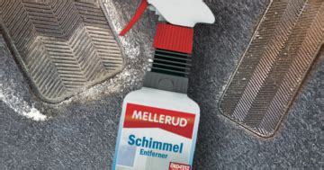 schimmel auf gummi entfernen 6097 auto schimmel entfernen 83metoo