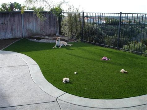 artificial turf for dogs artificial turf tucson arizona 187 residential synthetic turf gallery