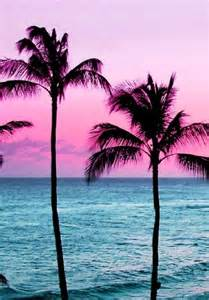 paradise, pink sky, pink sunset, sand, sky, summer, sunrise, sunset, s