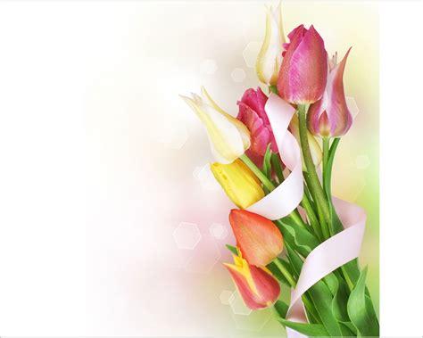 fiore da stare immagini fiori da stare il mondo in un giardino il fiore