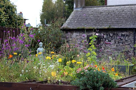 Coastal Cottage Plans irish cottage gardens cottage flowers and gardens
