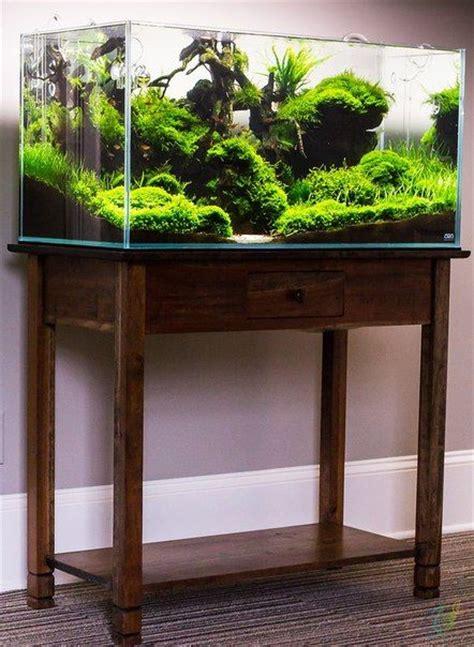 best fan for aquarium 25 best aquascaping ideas on pinterest